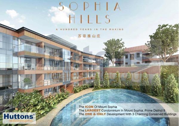 sophia hills pool