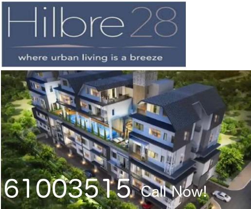 hilbre 28 hotline