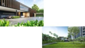 Hotline +65 6100 3515 Thomson-impressions-landscape-300x170